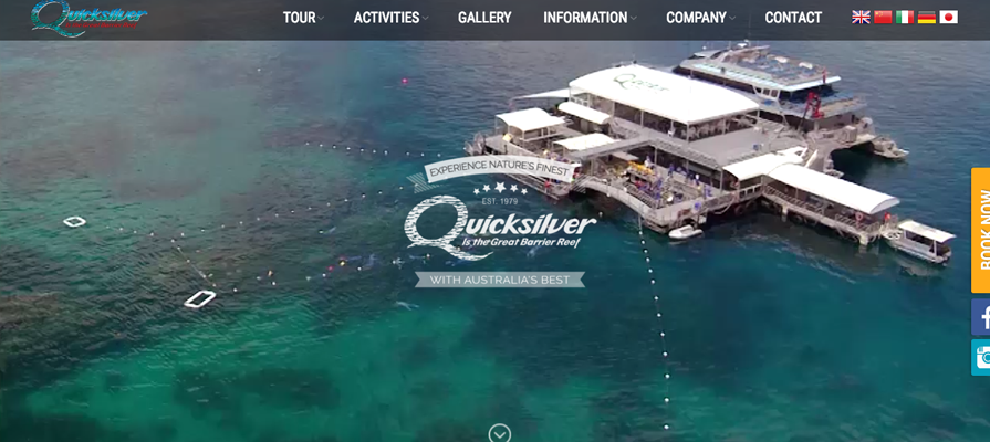 Website translation example 6: screenshot of Quicksilver website